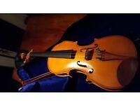 Stentor Student 4/4 Violin