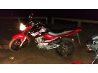 Herea my 16 plate honley up for sale after cash or swops for a car or motorbike