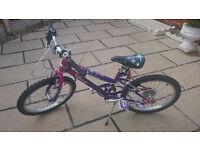 """Girls 20"""" Bike"""
