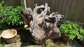 Garden feature Tree Stump