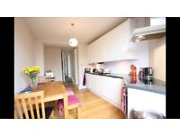 Attractive one bedroom flat close to Preston Park station