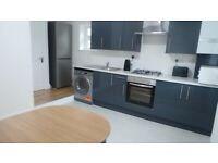 *DSS WELCOME* Beautiful Modern 2 Double Bedroom flat (1 En-suite) on Roman Road E3