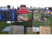 dog cages/ pet accessories