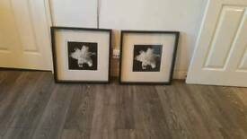 black and white wall art in mint condition