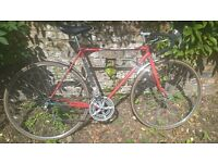 Vintage 10 Speed Road/Race Bike in Perfect Working Order (Frame SIze 53)