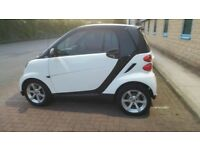 SMART FORTWO PULSE 71 AUTOMATIC ( VERY CLEAN )