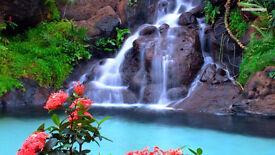 professional Thai Massage/Massage Only
