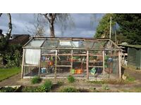"Alton Cedar Greenhouse 15'6"" x 10'6"" with original concrete plinth approximately 35 years old"