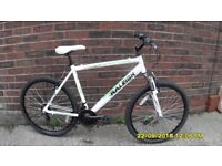 MENS RALEIGH MUSTANG 18 SPEED FRONT SUSP MOUNTAIN BIKE 20in ALLOY FRAME V/CLEAN BIKE RECENT SERVICE