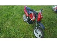 Mini bike 50cc starts and runs fine no oil leaks whatsoever