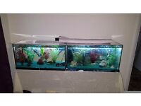 Two 2ft fish tanks. can be sold separately so please ask for prices or make an offer