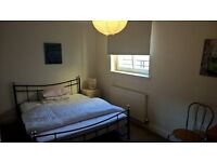 Spacious Double Room in Abbeyhill