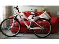 bike.for sale