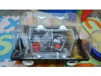 Hamster cage complete set up