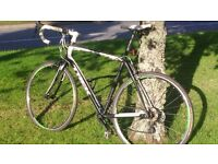 Trek Domane 2.3 Road Bike, excellent condition and fully serviced.