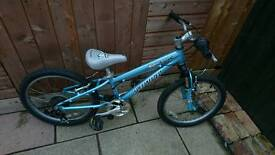 Girls specialized mountain bike