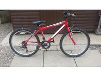 Red boys mountain bike