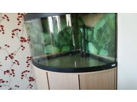 Complete Fluval Corner Fish Tank with built in cupboard capacity of tank 4.96 cubic feet