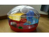 Beautiful hampster cage with everything