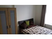 Lovely bright large double room available in quiet house share