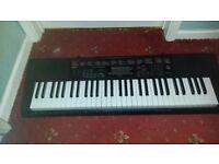 Casio LK-160 Keyboard and stand.