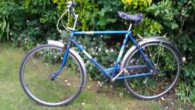 Raleigh campus 3 speed blue