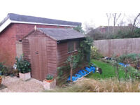 Shed - Wooden garden Shed 8*6 Good Condition needs a new home