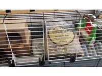 2 floor guinea pig cage Ferplast 120 plus accessories