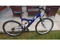 Apollo Excel mountain bike