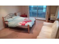 GREAT ROOM, NO FEES:) MOVE ASAP! PERFECT AREA