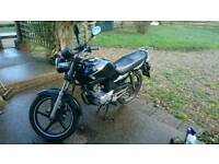 Yamaha YBR 125 2009 ED / 8 months MOT / Learner legal 125cc