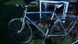 """Adults roadbike Vindec pro50 ( 21"""" frame racer type)"""