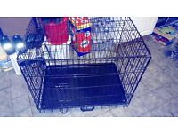 For sale medium size dog cage
