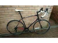 Specialized Allez Sport 58cm XL Road bike