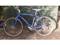 Specialized Crossroads city bike