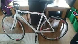 Single speed Road bike