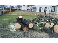 Logs and firewood for sale