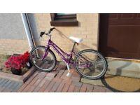 """Kids Bike Claud Butler 17"""""""