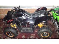 800w electric quad