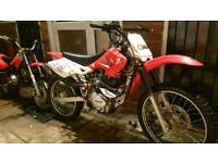 200cc big wheel pit dirt bike pitbike