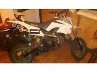 125 lifan pit bike
