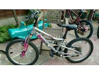 Appolo pure mountain bike