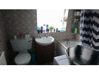 For rent nice double room