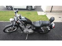 Harley Davidson XL883C Sportster for sale