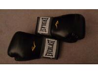 Everlast Boxing Gloves 12oz.
