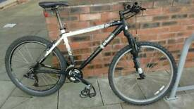 B Twin mountain bike