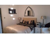Rooms available in a beautiful home