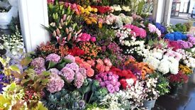 Florist required in Chelsea for immediate start .