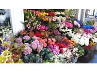 Florist required in Chelsea