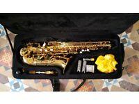 Erkhart 100AS saxophone & case. Excellent condition.